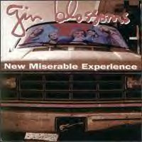 ginblossoms_new