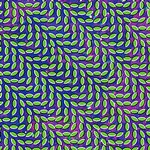 animalcollective_merriweather_150